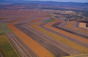 Strip Farming Agriculture Central West NSW